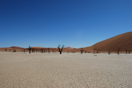 Namibia 434