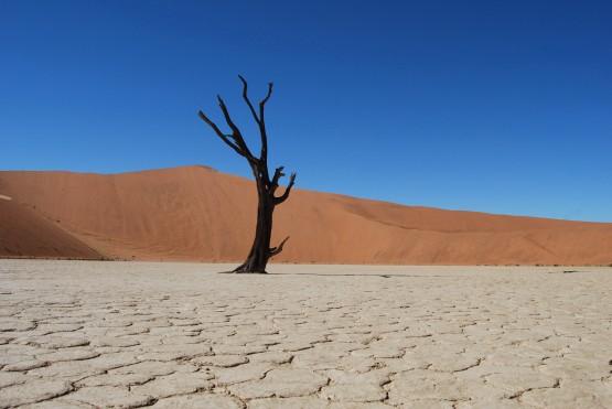 Namibia 438
